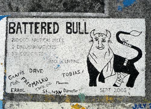 005batteredbull